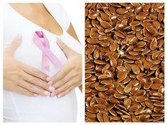 Semințele de IN mișcorează TUMORILE și previn CANCERUL de SÂN Good To Know, Marker, Dog Food Recipes, Healthy Life, Scoliosis, Apothecary, Plants, Home, Healthy Living