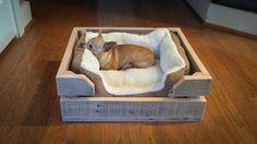 Perro cama cajón de madera de madera reciclada por ReformedWood