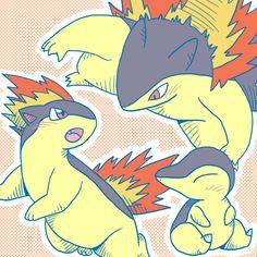 Pokemon - Cyndaquil, Quilava, Typhlosion My favorite starter Pokemon Pins, All Pokemon, Pokemon Games, Cute Pokemon, Pokemon Stuff, Manga, Satoshi Tajiri, Pokemon Starters, First Pokemon