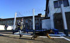 #срочно #Криминал | Россиян стали чаще арестовывать и дольше держать под стражей | http://puggep.com/2015/10/02/rossiian-stali-chashe-arestovy/