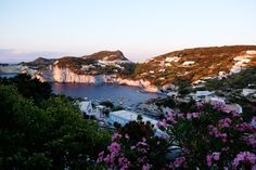 Noch ein kleiner Geheimtipp: Ponza - la isola bella