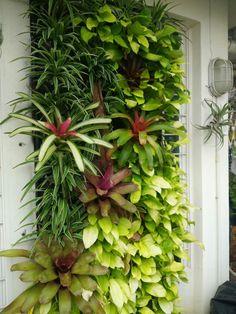 Vertical Vegetable Gardens Ideas You Will Love - Organic Garden 101