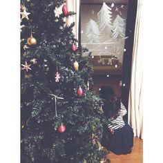 Christmas Tree, Windows, Facebook, Holiday Decor, Home Decor, Teal Christmas Tree, Holiday Tree, Window, Xmas Tree