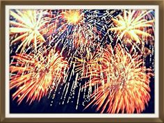 Action week fireworks 2013 Fireworks Show, Dandelion, Shots, Action, Bar, Random, Flowers, Plants, Group Action