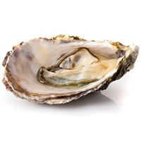 Eat This: Oysters