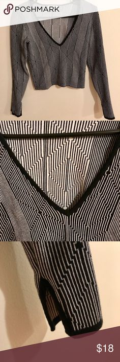 Urban Outfitters Silence + Noise Crop Top Black and white striped long sleeve crop top with plunging neckline. silence + noise Tops Crop Tops