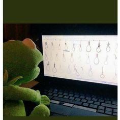 Kermit The Frog Meme, Funny Kermit Memes, Cartoon Memes, Funny Video Memes, Muppet Meme, Ichigo E Rukia, Cute Love Memes, Meme Template, Wholesome Memes