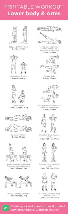 Lower body & Arms – illustrated exercise plan created at…