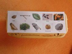 ......mamamisas welt......: Eine Sammelschachtel für den Waldspaziergang