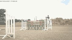 Ben Mayer || Behind the Scenes of Show Jumping [x]