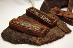 Arthur's Seat coffins. Two of the 17 miniature coffins found in 1836 ,hidden inside a cave
