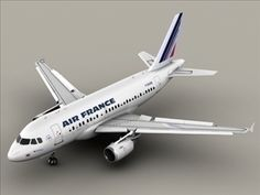 Airbus A318 Air France 3D Model- ery high definition model of an Airbus A318 textured as Air France. All flaps, rudders and the landing gear can be animated. All textures included in tga, eps and Adobe Illustrator format.Max Format:The flaps, rudders and the landing gear are animated. Meshsmooth is applied so you can set the object resolution as you like. Just use the Named Selection Set meshsmooth to select the SubD objects.Obj Format:In 3 different resolutions ranging from 154253 to 817801…