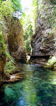 Vintgar Gorge, Slovenia (Lake Bled and alps) Places Around The World, The Places Youll Go, Places To See, Around The Worlds, Beautiful World, Beautiful Places, Beau Site, Science And Nature, Nature Pictures