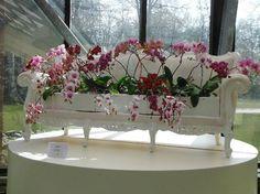 Indoor orchid gardens - Picture of Keukenhof, Lisse - TripAdvisor