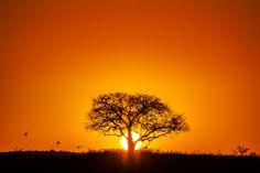 Sunset by Novais Almeida on 500px
