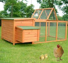 Chicken Run Rabbit Hutch Objective Chicken Coop Hen House Poultry Backyard Poultry Supplies