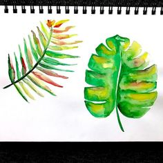More watercolors! Last week of living here in Texas - next week we'll be off on our new journey! Tropical leaves are my current favorite…