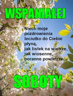Good Morning Quotes, Humor, Roman, Good Morning Funny, Pictures, Polish, Humour, Moon Moon, Funny Humor