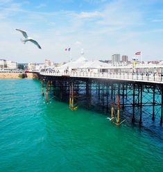 how to spend a day in Brighton Visit Brighton, Brighton Rock, Brighton England, Abandoned Castles, Abandoned Mansions, Abandoned Houses, Abandoned Places, British Summer, Abandoned Amusement Parks