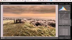 Landscape editing