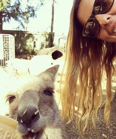 Kangaroo selfie! @ellzzzg is clearly a great time Down Under! #gapsnap #kangaroo #selfie #australia #wildlife #downunder #instadaily #travel #travelling #traveling #travelgram #instatravel #travelphotography #gapyear #backpacking