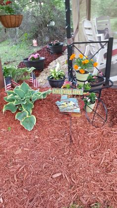 Cheap and simple decor brings life to any back yard.