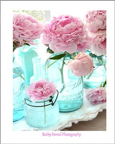 Pink Peony Photography Shabby Chic Peony Decor Pink by KathyFornal