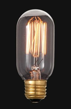 We offer a huge selection of Edison style bulbs including this 60 Watt, 120 Volt Edison base vintage style bulb with squirrel cage style filament pattern, 4 inch height. Round Light Bulbs, Industrial Style Lighting, Antique Lamps, Vintage Fashion, Vintage Style, Light Decorations, String Lights, Light Fixtures, Steampunk