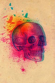 Beautiful skull
