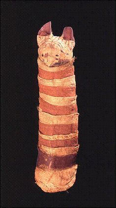 Cat Mummy Ptolemaic Period McClung Museum Cats in Ancient Egyptian Art