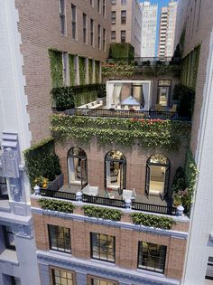 Love the ivy. Duplex penthouse, beautifully set within confined city space.