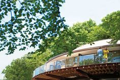Tree House hotels | New Forest | Hampshire hotels