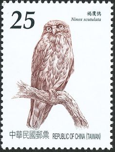 Northern Boobook stamps - mainly images - gallery format