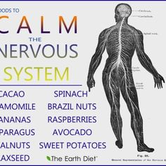 Foods to calm the nervous system. *ALSO get ample amounts of sleep, drink plenty of water, meditate, practice yoga, and overall seek inner peace ♥