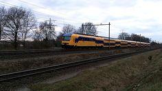 DDZ Train NS Dutch Railways at Blerick NL 4-3-2014   Flickr - Photo Sharing!