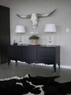 Texas longhorns bought on Ebay.