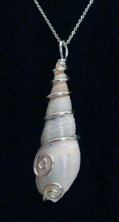 Virginia+Beach+Shell+with+a+Curly+.925+Sterling+by+AngelWingStudio,+$65.00