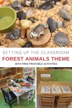 Forest Animals Theme Ideas for Toddlers and Preschoolers Creating a forest animals theme encourage our toddlers and preschoolers to become engaged in lots of hands-on activities. There are multiple sets of printables provided, too, that can be used in the Preschool Classroom Setup, Fall Preschool, Preschool Themes, Toddler Preschool, Forest Theme Classroom, Preschool Decorations, Classroom Ideas, Toddler Teacher, Preschool Teachers