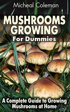 Growing Vegetables Mushrooms Growing For Dummies: A Complete Guide to Growing Mushrooms at Home: (Mushroom Farming, How to Grow Oyster Mushrooms, Edible Mushrooms) (Farming For Dummies, Gardening For Dummies Book Growing Mushrooms At Home, Garden Mushrooms, Edible Mushrooms, Stuffed Mushrooms, How To Grow Mushrooms, Gardening For Dummies, Gardening Tips, Gardening Supplies, Gardening Quotes