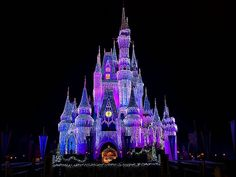 pictures of disneyworld at christmas - Google Search