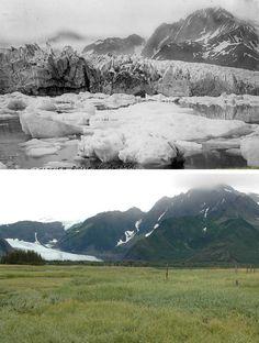 Pedersen Glacier - Alaska