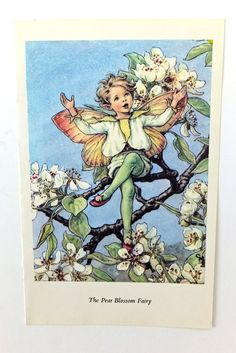 Pear Blossom Fairy Picture Vintage by PeonyandThistlePaper on Etsy, £4.50