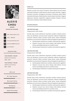 Us Resume Template 4Page Professional Resume Template  A4 And Us Letter  Cv