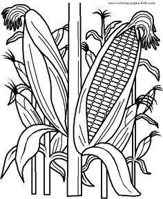 Farm Coloring Pages Cornfield