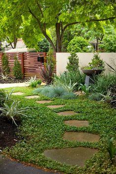 puutarhan polun laattoja voi hiekan sijasta ympäröidä vihreä maanpeitekasvimatto