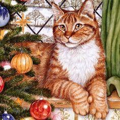 Chats de Noël