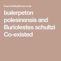 Ixalerpeton polesinensis and Buriolestes schultzi Co-existed