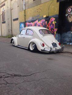 slammed Beetle