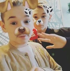 Aww look at my perfect dogs ❤️❤️ Marcus Y Martinus, I Go Crazy, Snapchat, Cute Pictures, Singer, Martinis, Pure Products, Twin, Idol