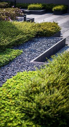 45 DIY Backyard Zen Garden Ideas - GoWritter Modern zen gardens usually serve as an addition to a larger yard, offering a peaceful corner for quiet reflection. Sand, pebbles, rocks and simple lines are used to create a sense of simplicity Modern Landscape Design, Modern Garden Design, Modern Landscaping, Contemporary Landscape, Landscape Architecture, Garden Landscaping, Contemporary Gardens, Landscape Materials, Modern Gardens